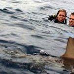Open Water: Com'è profondo il mare